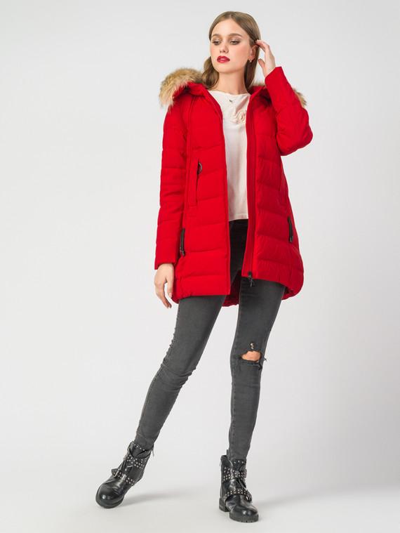 Пуховик текстиль, цвет красный, арт. 08006496  - цена 7490 руб.  - магазин TOTOGROUP